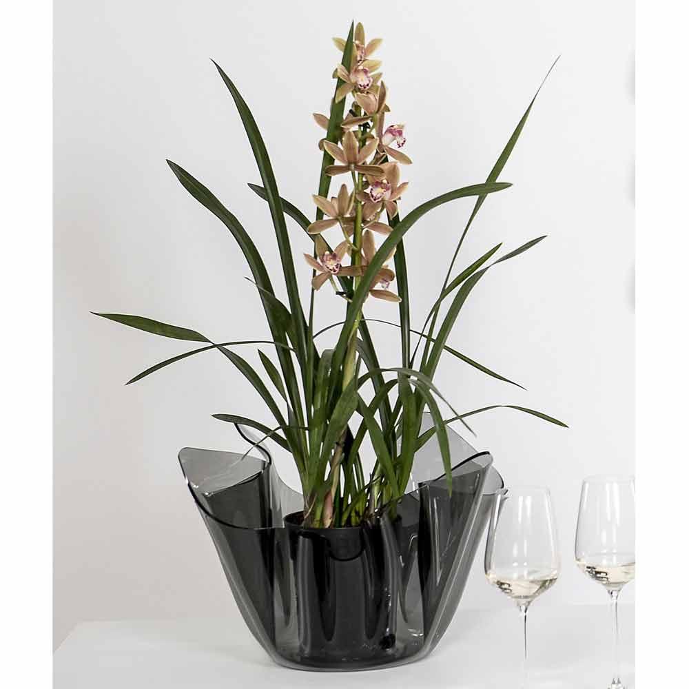 Vase Fum Drap De Design Moderne Int Rieur Ext Rieur Pina